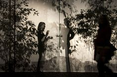 Light & Shadow « Light Matters Concha Argüeso's installation at A trans Pavilion, Berlin, transforms a simple gallery space into a dreamy forest on a glass screen.