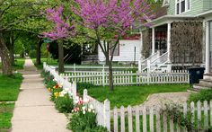 Spring in Ann Arbor, Michigan: Photos