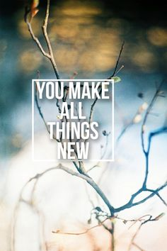 """…and He who is seated on the throne said, See! I make all things new…"" (Revelation 21:5, AMP)."