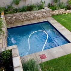 small pools | Small Backyards | Pacific Paradise Pools | Ideas for ...