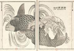 BnF - L'estampe japonaise - Hokusai : La Manga