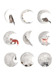 Hattie describes Moon Phase asA collection of nocturnal animals perched on the changing phases of the moon.  About Hattie'Hattie Buckwell also known as HattieHat is an Illustrator & Maker based in sunny Bristol.Working with watercolour & inks, she sells Original Illustrations, Giclee Prints & Cards. Painting homes from around the world, times of adventure & lots of animals!She also makes 3d works such as her much loved hand-speckled narwhal soft sculptures & silver-l...