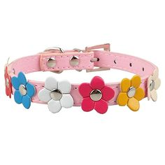 Bright Colorful Daisies and Flowers Pattern All Over Animal Seatbelt Pet Collar