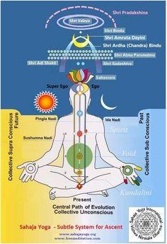 7 yoga systems