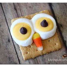 Owl face smores with candy corn!