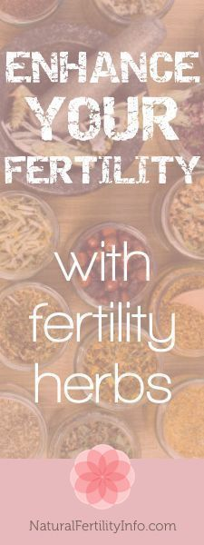 Enhance your fertility with fertility herbs.
