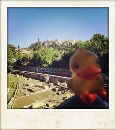 Here too! (ATH)  #History #ancient #Greece #Athens #Acropolis  ____ #crewlife #flightattendant #CabinCrew #mrjquack #airline #travelgram #travel #Aviation #wanderlust #neverstopexploring #avgeek #AviationGeek #upintheair #instapic #skybound #picoftheday #potd #bestjob #QuackInternationalAirlines  ____ http://tipsrazzi.com/ipost/1506115018517045166/?code=BTmy6Etlt-u