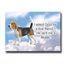 Beagle True Friend Fridge Magnet Funn #beagle True Friend Fridge Magnet Funny #beaglefunny