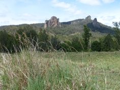 Nimbin Rocks located on the outskirts on Nimbin northern NSW.The three prominent rocks were named by early white settlers,Thimble,Catherdral and Needle.The rocks have special significance to the local Aborigines (Bundjalung tribe) who regard them as a sacred burial site.