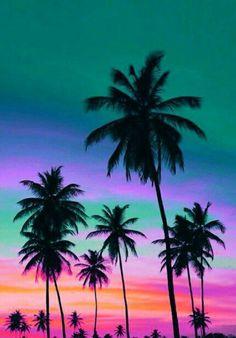 Beautiful Sunset, Beautiful World, Beautiful Places, Amazing Sunsets, Summer Sunset, Sunset Beach, Beach Sunsets, Pastel Sunset, Palm Tree Sunset