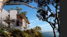 cement, not wood color or railing :: Aidlin Darling Design :: Residential