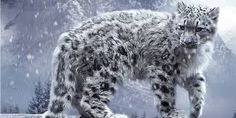 Image result for abstract snow leopard