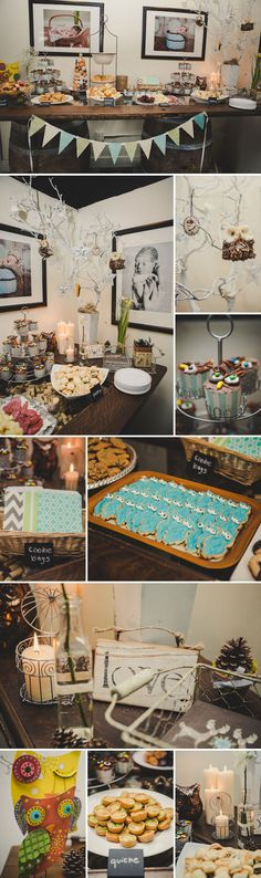 My Rustic Owl Themed Baby Shower. Maler Photography