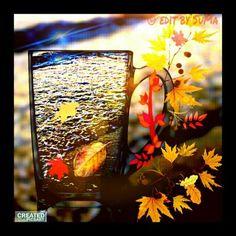 wapautumn autumn leafs colorful glass