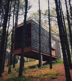 Camper Cabin In White Tail Woods, Farmington, Minnesota. [640x360] - Modern and Vintage Cabin Decorating Ideas, Small Cabin Designs, Cabins Interior and Decor Inspiration