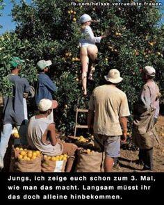 lustiges Bild 'Rotkaeppchen.jpg'- Eine von 21825 Dateien in der Kategorie 'witzige Bilder' auf FUNPOT.