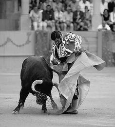 Arte taurino. Morante de la Puebla.