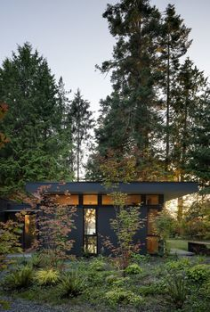 Wittman Estes Architecture+Landscape have recently completed the Hood Cliff Retreat, a series of modern cabins that are hidden in the forest and overlooking Washington's Hood Canal. Pass Through Window, Cedar Cabin, Interior Cladding, Indoor Outdoor Kitchen, Retreat House, Clerestory Windows, Cedar Siding, Outdoor Retreat, Kabine