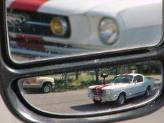 Dewayne76528 Gatesville  1965 fb