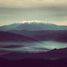 Allow nature to teach you stillness #eckharttollequote #mtbuffalo #fallscreek #mounthotham #summit #landscape #fog #snow #layers
