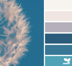 """Inspiration is everywhere. You can choose a palette like this one to help you when it's time to choose colors for your next knitting or crochet project. Photo """"Color Seed"""" from the website Design Seeds"""