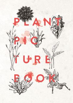 Plant Picture Book - Mille Mil Mille