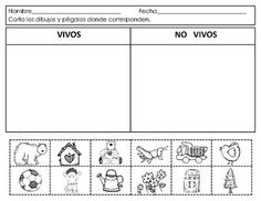 Spanish:Living and NonLiving. Seres vivos y no. by Mrs G Dual Language Spanish Lessons For Kids, Spanish Activities, French Lessons, Preschool Activities, Spanish Language Learning, Teaching Spanish, Teaching French, Petite Section, Living And Nonliving