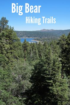 Hiking in Big Bear, California #Travel #Hiking #Adventure #BigBear #California #Forest