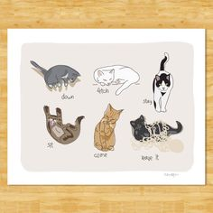 Cats Being Cats Art Print - Funny Cat Gift  - Sit Stay Come Cat Art Free Shipping by PopDoggie on Etsy https://www.etsy.com/listing/70427873/cats-being-cats-art-print-funny-cat-gift