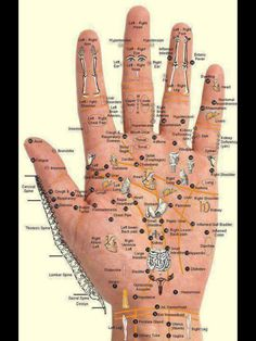 Hand Reflexology Chart for using doTERRA oils Health And Beauty, Health And Wellness, Health Fitness, Health Tips, Health Benefits, Health Care, Workout Fitness, Health Trends, Healthy Beauty