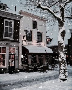 Winter and Christmas aesthetic Winter Szenen, Winter Magic, Winter Time, Winter Christmas, Santa Christmas, Natural Christmas, Gold Christmas, Winter Season, Snowy Day