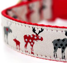 Cute moose dog collar!  Brutus might need this.