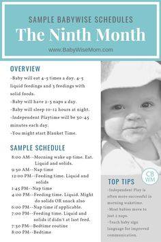 Sample schedules for an 8 month old using the Babywise method. This is the month of life. Baby schedules for weeks old. Get Babywise schedule help. Baby Schlafplan, Baby Boys, Get Baby, Newborn Schedule, Baby Sleep Schedule, Baby Wise Schedule, 8 Month Old Schedule, Baby Monat Für Monat, Crafts