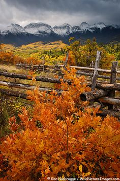 San Juan Mountains, Colorado; photo by Ron Niebrugge