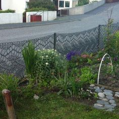 A beautiful shetland lace fence on The Shetland Islands . Knit on giant knitting needles made of curtain poles by Anne Eunson Hamnavoe , Burra Isle , Shetland July 19 2012.
