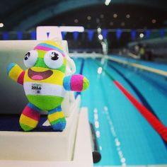 #nanjing2014 #nanjinglele #youth #swimming nanjinglele in Olympic Stadium