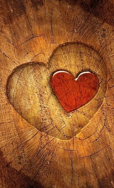 Ana Rosa: red heart on brown wood: ♥ I Love Heart, Key To My Heart, With All My Heart, Happy Heart, Heart Pics, Heart In Nature, Heart Art, Heart Wallpaper, Wallpaper Art