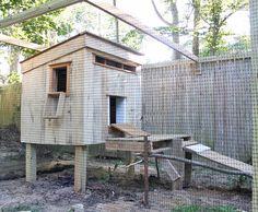 The finished chicken coop from recycled pallets with fencing and found-wood ramp