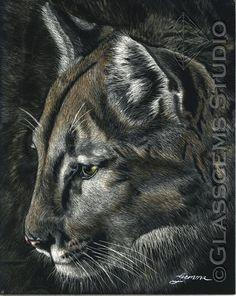 Mountain Lion / Cougar, Scratch board art by Gemma Gylling