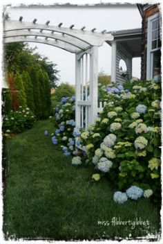 Love this outdoor space.  I definitely plan on planting more hydrangeas...gorgeous