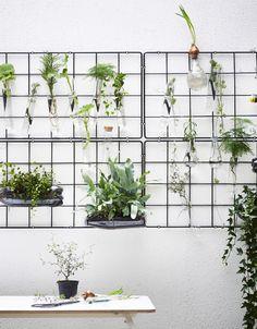 Creative gardening tips | Garden ideas - IKEA Cheap Pergola, Backyard Pergola, Pergola Kits, Pergola Ideas, Small Space Gardening, Garden Spaces, Hydroponic Gardening, Gardening Tips, Organic Gardening
