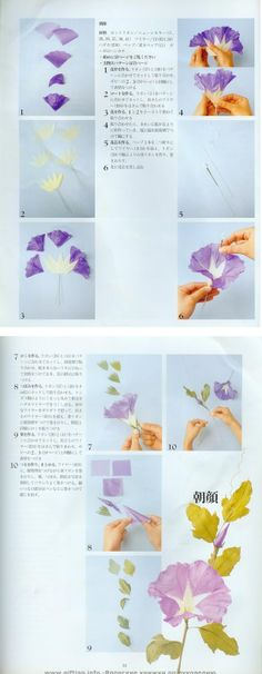 Crepe paper Morning Glory.