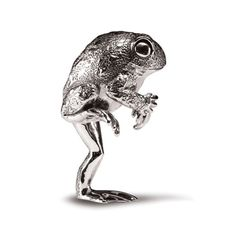 Toad Standing in silver by Patrick Mavros Flying Ants, Toy Craft, Rodents, Wildlife Art, Toad, Cape Dutch, Lion Sculpture, Creatures, African