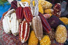 Corn in Peruvian market | Flickr - Photo Sharing!