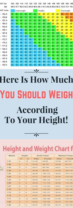 When it comes what should your ideal weight be, there is a misconception that it needs to be in accordance with your height. For example, lots of people think that if you are 160 cm high, your ideal weight is 65 kg, however, this is far from the truth. Here is the reason: Apart from …