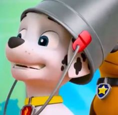 Paw Patrol, Pup, Wallpapers, Entertaining, Humor, Dog, Humour, Wall Papers, Puppies