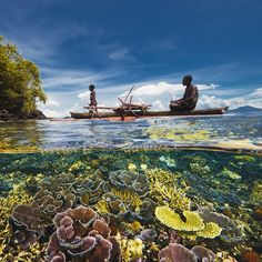 Photo by @daviddoubilet A father and son fisherman in their wooden outrigger glide across a coral garden surrounding a small island in Kimbe Bay, Papua NewGuinea. #KimbeBay is a deep water bay with shallow fringing reefs and seamounts rising from the depths. It is a rich and diverse corner if the coral triangle, a region known as the core of  marine biodiversity on our planet that includes the Philippines, Indonesia and #PapuaNewGuinea. Photographed with @jenniferhayesig for @natgeo…