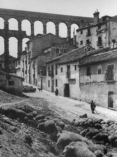 Segovia, Spain. Roman Aquaduct (1920)