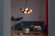 Just another Design Your Corner Sites site Flamboyant, Electrical Wiring, Interior Inspiration, Ceiling Lights, Dining, Interior Design, Lighting, Pendant, Modern