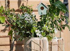 Creations - Artemio Decoration, Bird, Outdoor Decor, House, Wedding, Home Decor, Gardens, Empty Bottles, Birdhouse